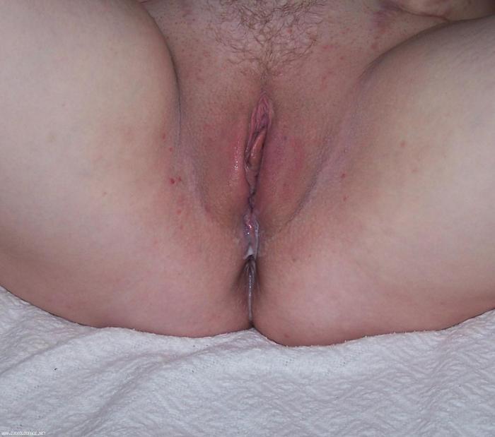 Wife's Wht Bull's Creampie